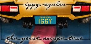 Iggy-290x140.jpg